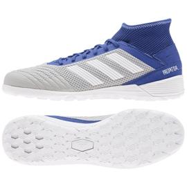 Binnenschoenen adidas Predator 19.3 In M D97963 grijs blauw, grijs / zilver