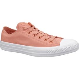 Oranje Converse C. Taylor All Star schoenen W 163307C