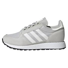 Grijs Adidas Originals Forest Grove Jr EE6565 schoenen