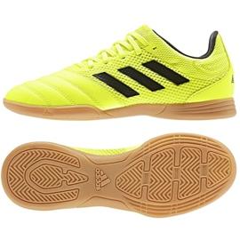 Schoenen adidas Copa 19.3 In Sala Jr. EF0561