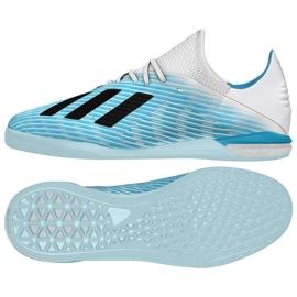 Indoorschoenen adidas X 19.1 In M G25754
