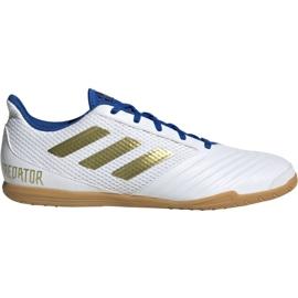 Adidas Predator Sala 19.4 In M EG2827 voetbalschoenen