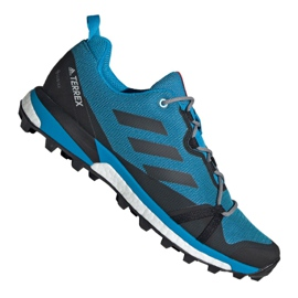 Adidas Terrex Skychaser Lt Gtx M F36107 schoenen