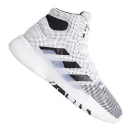 Adidas Pro Bounce Madness 2019 M BB9235 schoenen wit wit
