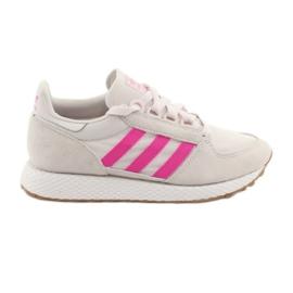 Adidas Forest Grove W EE5847 schoenen