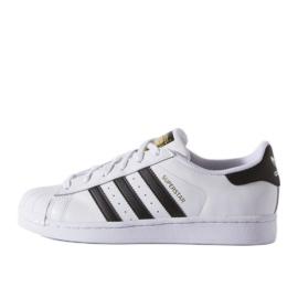 Adidas Originals Superstar Fundation Jr C77154 schoenen wit