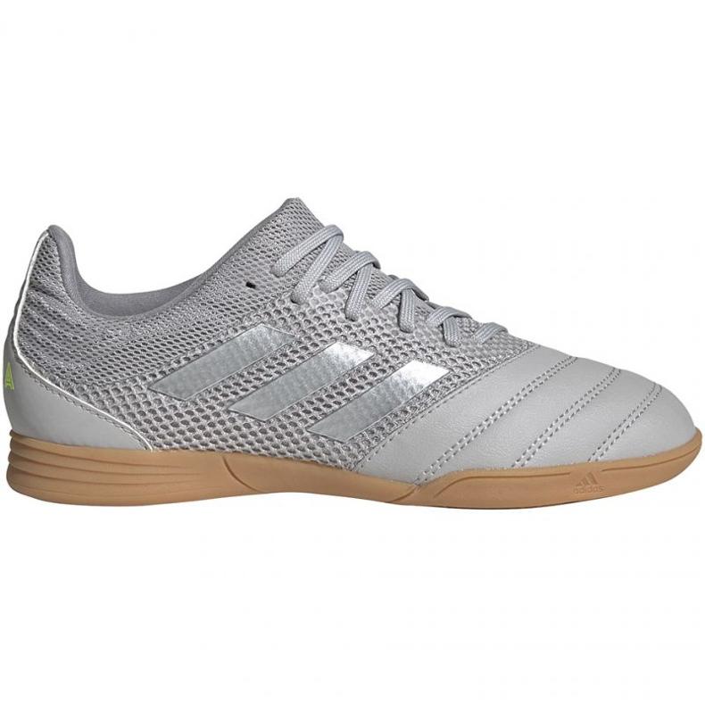 Adidas Copa 20.3 In Sala Jr EF8338 voetbalschoenen grijs grijs / zilver