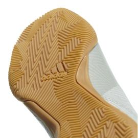 Binnenschoenen adidas Nemeziz Tango 18.3 In M DB2197 wit wit 4