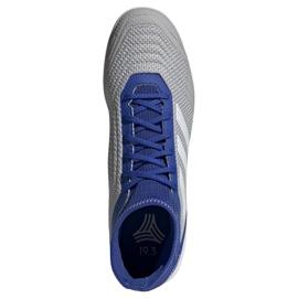 Binnenschoenen adidas Predator 19.3 In M D97963 grijs blauw, grijs / zilver 2