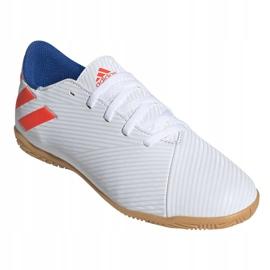 Binnenschoenen adidas Nemeziz Messi 19.4 In Jr F99928 wit wit 3