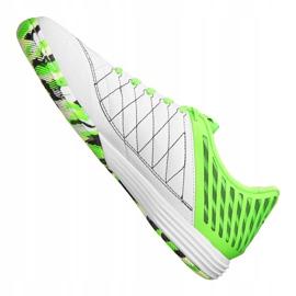 Binnenschoenen Nike LunarGato Ii Ic M 580456-137 groen 2
