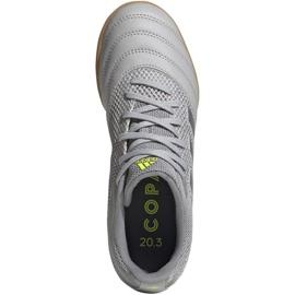 Adidas Copa 20.3 In Sala Jr EF8338 voetbalschoenen grijs grijs / zilver 1