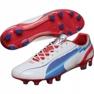 Puma Evo Speed 1 Fg M 102527 01 voetbalschoenen wit wit 1