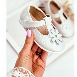 Apawwa Baby Ballerina's met Klittenband Bloem Zilver Antrela grijs 1